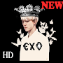 EXO wallpapers KPOP fans APK icon