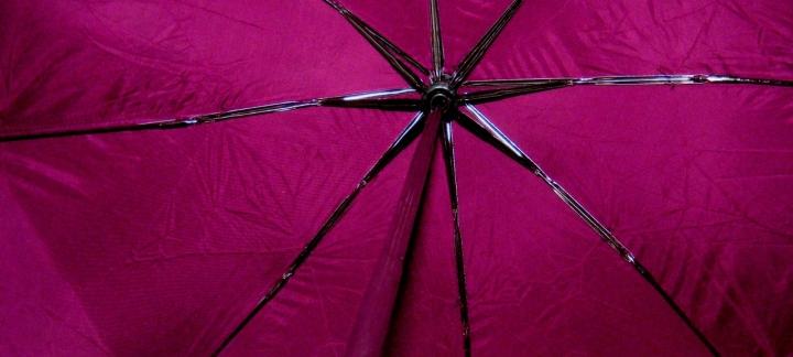 Purple Rain di cicciocozza
