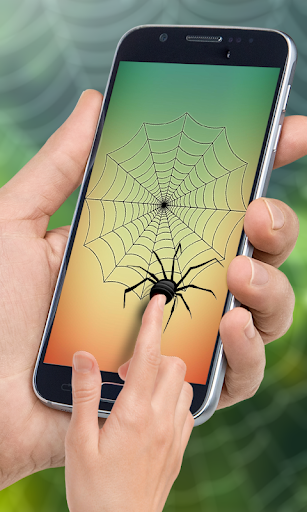 Spider Web Out 1.0 screenshots 1