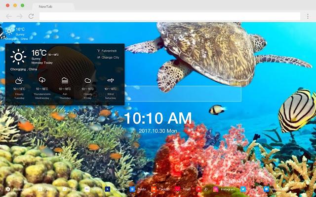 Underwater World HD Wallpapers Ocean Themes