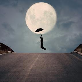 night fly by Adrian  Limani - Digital Art Things