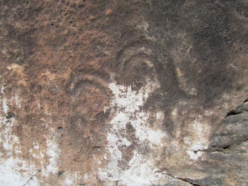 Photo: Faint bighorn sheep petroglyphs