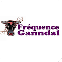 Frequence Ganndal icon