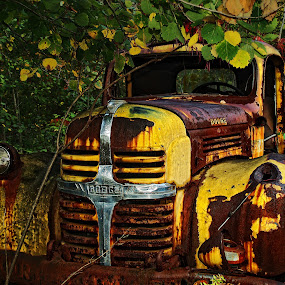 fall by William Brothers - Transportation Other