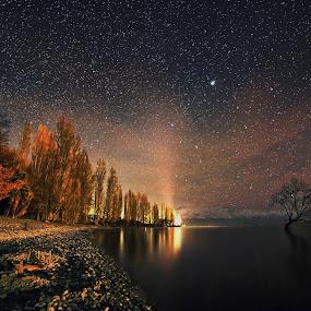 Lone Tree with Stars by Jomy Jose - Landscapes Starscapes ( wanaka, lone tree, south island, stars, lake wanaka, new zealand,  )