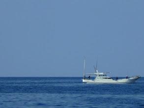 Photo: ご近所の船も・・・。