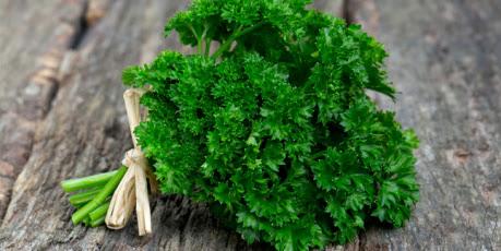 Ramuan Herbal Osteoporosis