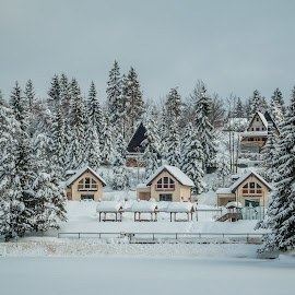 by Mario Horvat - City,  Street & Park  Vistas ( outdoor, white, freezing, nature, snow, winter, cabin, cold, trees )