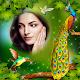 Love Bird photo Frame APK