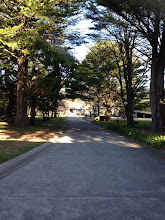 Photo: Day 8: Driveway of the school to the main gate