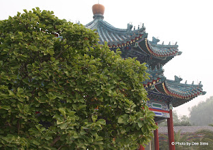 Photo: Day 190 - Pavillion  in Zhongshan Park