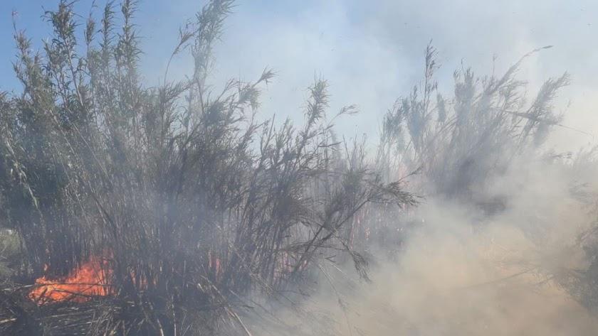 Incendio originado en Los Marteses, en Serón: Foto del Plan Infoca