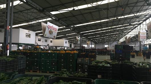 La caída de la producción y el frío hace que suban los precios agrícolas