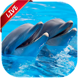 Dolphin Live Wallpaper apk