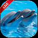 Dolphin Live Wallpaper icon