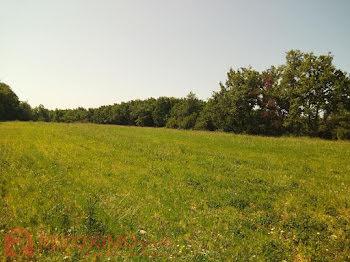 terrain à Fleurance (32)