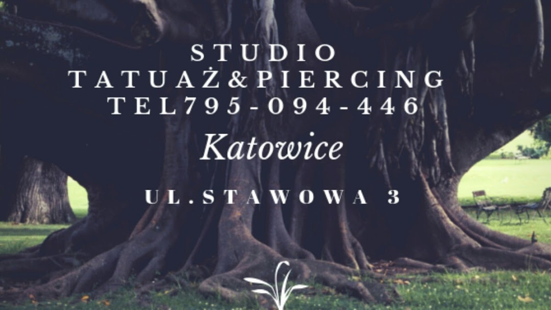 Rectum Tattoopiercing Salon Tattoo W Katowice
