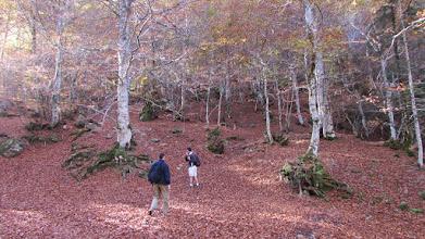 Photo: Zvolili jsme tedy jinou cestu začinající zhruba na 1100 m v krásných podzimních barvách.