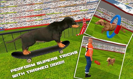 狗狗特技表演的3D模拟器