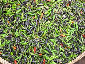 Photo: Chillies Puri Orissa