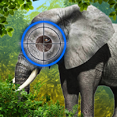 Elephant Hunter 3D