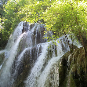 waterfall by Ionela Garovat - Nature Up Close Water ( water, nature, waterfall )