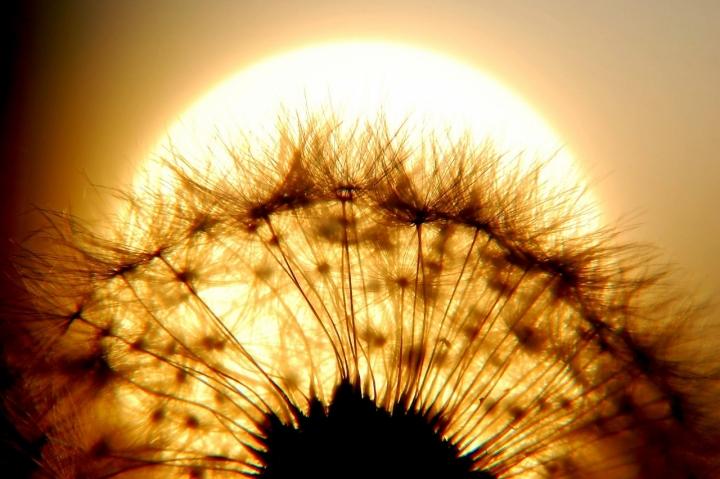 Un sole grande grande grande.... di AlfredoNegroni