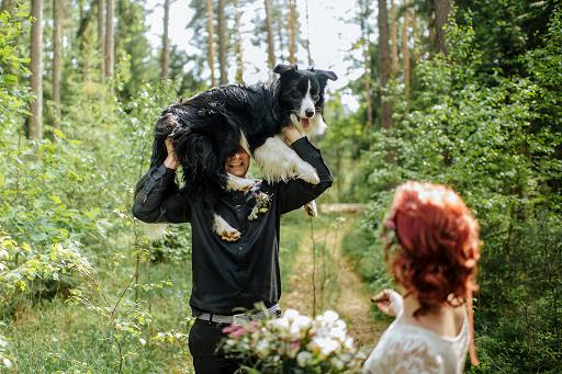 Wedding photographer Petr Wagenknecht (wagenknecht). Photo of 25.05.2018