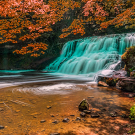 by Gordon Koh - Landscapes Waterscapes ( forest, waterfalls, green, motion, rocks, nature, stream, connecticut, long exposure, water, trees )