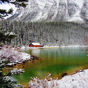 lake louise . Canada  by Pamela Zeng - Landscapes Mountains & Hills (  )