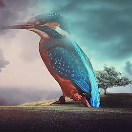 by Azhar Shaikh - Digital Art Animals ( bird, photoshop, manipulation )
