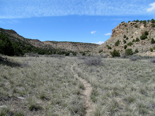 Faint cow trail
