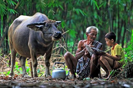 Ilustrasi [Copyright @ Benny Sugiarto Eko Wardojo | sumber: http://www.pixoto.com/]