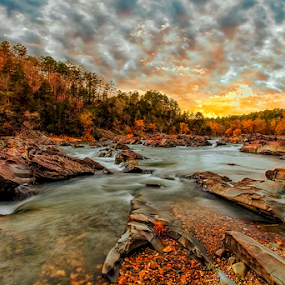 Streamside by Michael Buffington - Landscapes Sunsets & Sunrises ( stream, nature, autumn, sunset, fall, forest,  )