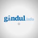 Gandul.info icon