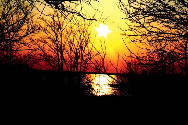 Star Ending Sun di FotoMaghella