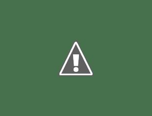 Корабли витальеров