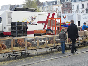 Photo: pluimveemarkt