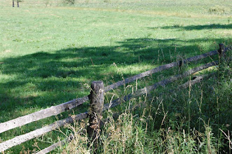 Photo: Pastwisko przy drodze Dobrzyki - Jerzwałd