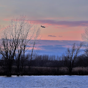 Flight Plan by Kathy Woods Booth - Landscapes Sunsets & Sunrises ( reflections, airplane, sunset, flying, riverscape, sundown )