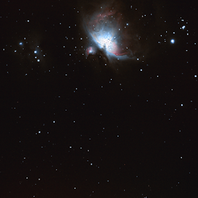 Messier 42 - The Orion Nebula by Mike Ellis - Landscapes Starscapes ( nebulas, astrophotography )