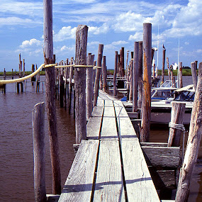 Walking the Dock by John Stone - Landscapes Travel ( boating, sailing, boats, bay water river, sea, plank, ocean, fishing, dock )