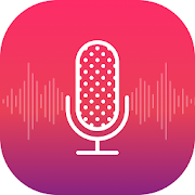 Voice recorder - Audio editor