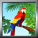 Bird Ringtones icon