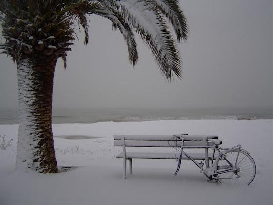Simboli estivi coperti di neve.. di veronica.er