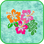 Aloha Hawaiian Hibiscus Flower