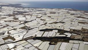 Mar de plástico en el Poniente almeriense, la principal zona invernada del mundo.