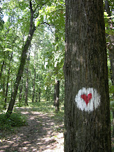 Photo: Following the heart trail on a walk in the Fruska Gora NP