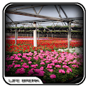 Flower Nursery Design Ideas icon