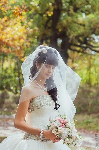 Wedding photographer Aleksandra Demina (DemiAll). Photo of 01.10.2013